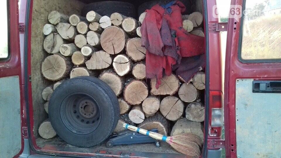 Полицейские выявили факт незаконной перевозки древесины в Дергачевском районе, фото-1