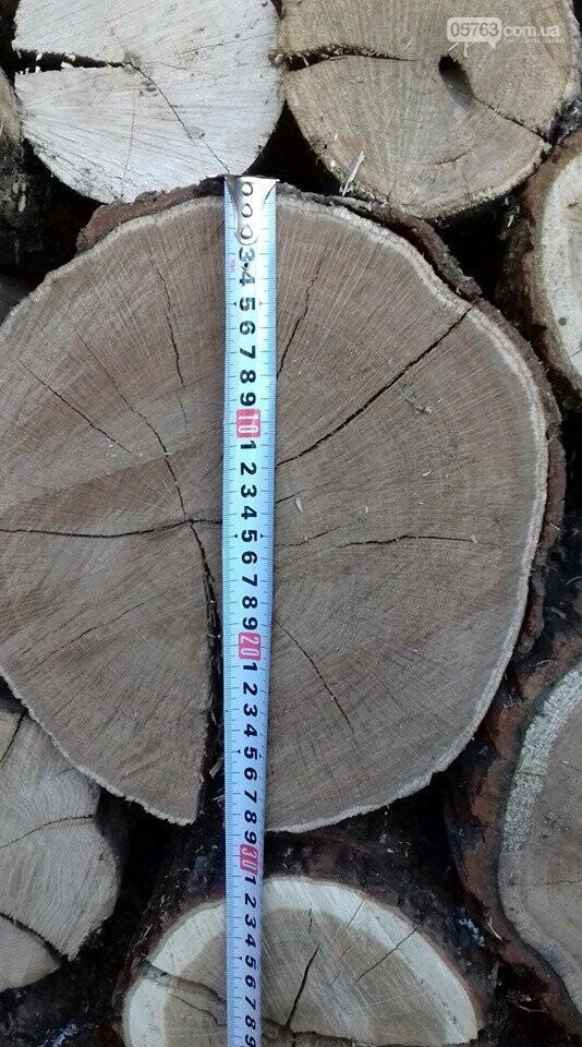 Полицейские выявили факт незаконной перевозки древесины в Дергачевском районе, фото-3