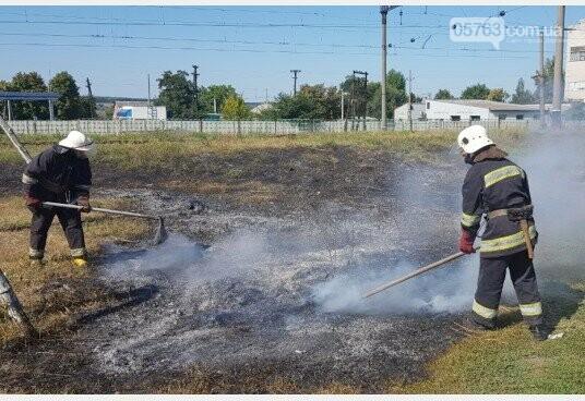 В Дергачевском районе во время пожара сухостоя пострадала женщина, фото-1