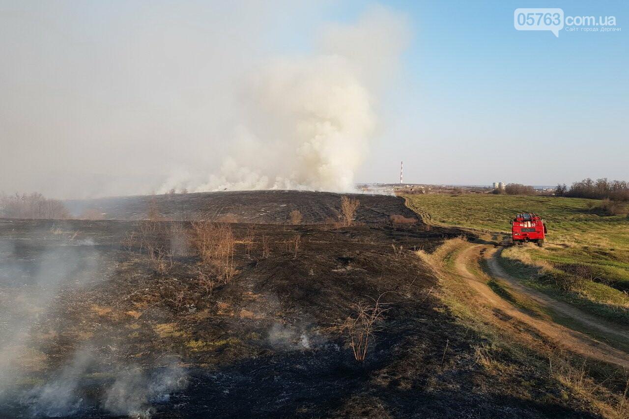 В Дергачевском районе во время пожара сухостоя пострадала женщина, фото-2