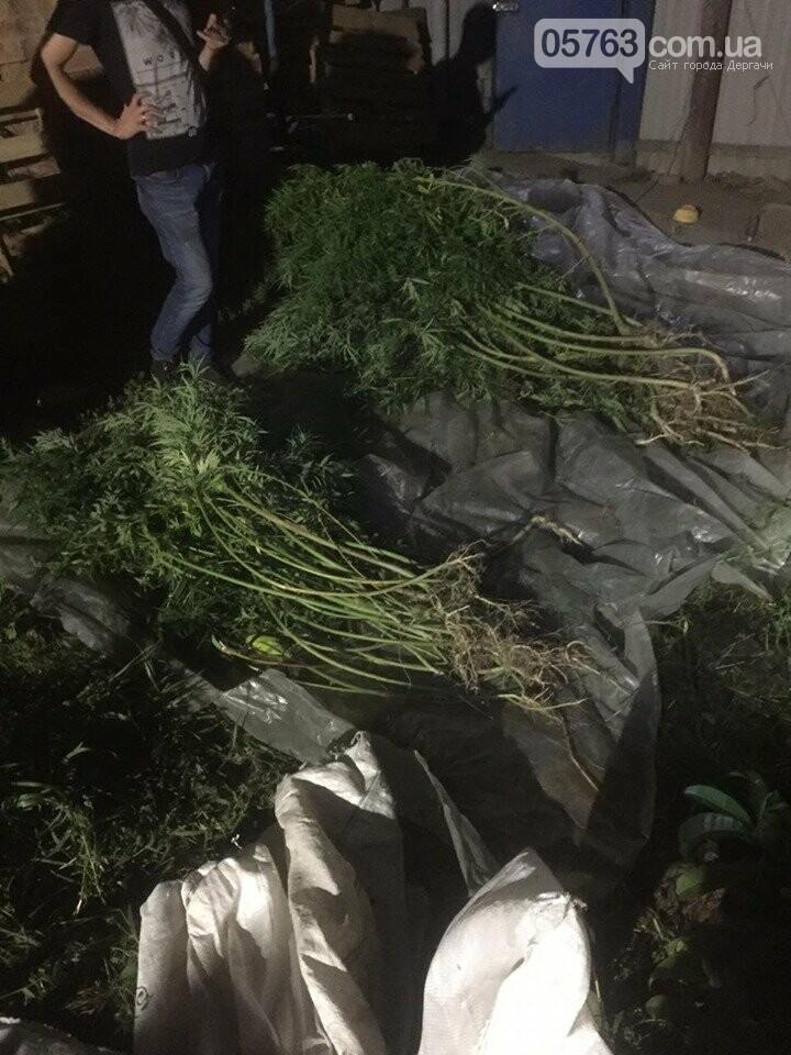 Дергачевские полицейские обнаружили и изъяли у местного жителя каннабис, фото-1