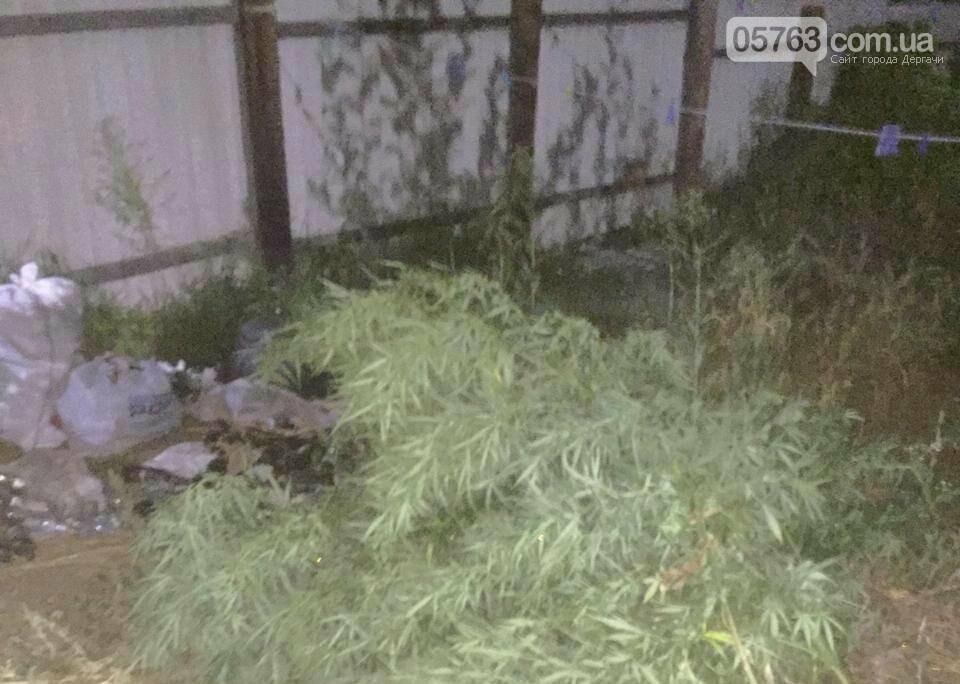 Дергачевские полицейские обнаружили и изъяли у местного жителя каннабис, фото-2