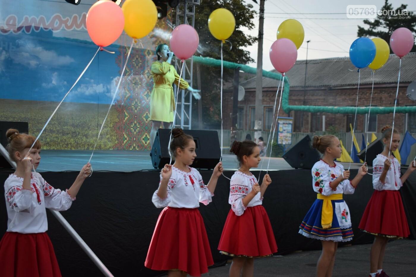 В Дергачах отметили День города, фото-24