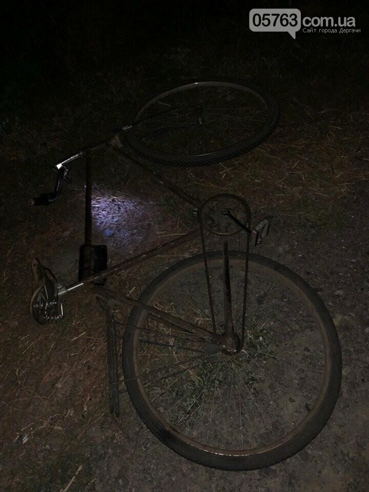 В Дергачевском районе погиб велосипедист , фото-2