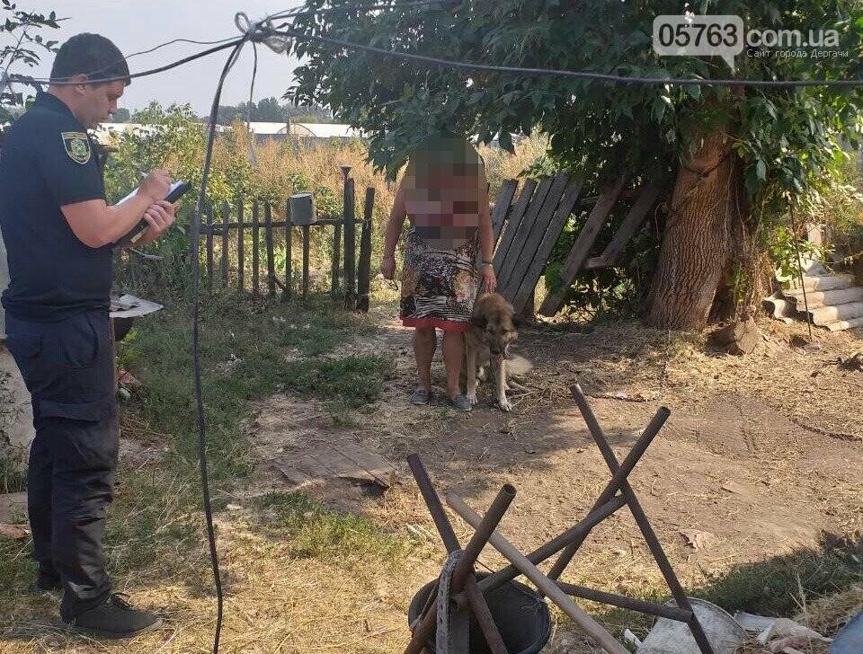 В Дергачах овчарка покусала 3-х летнюю девочку , фото-2