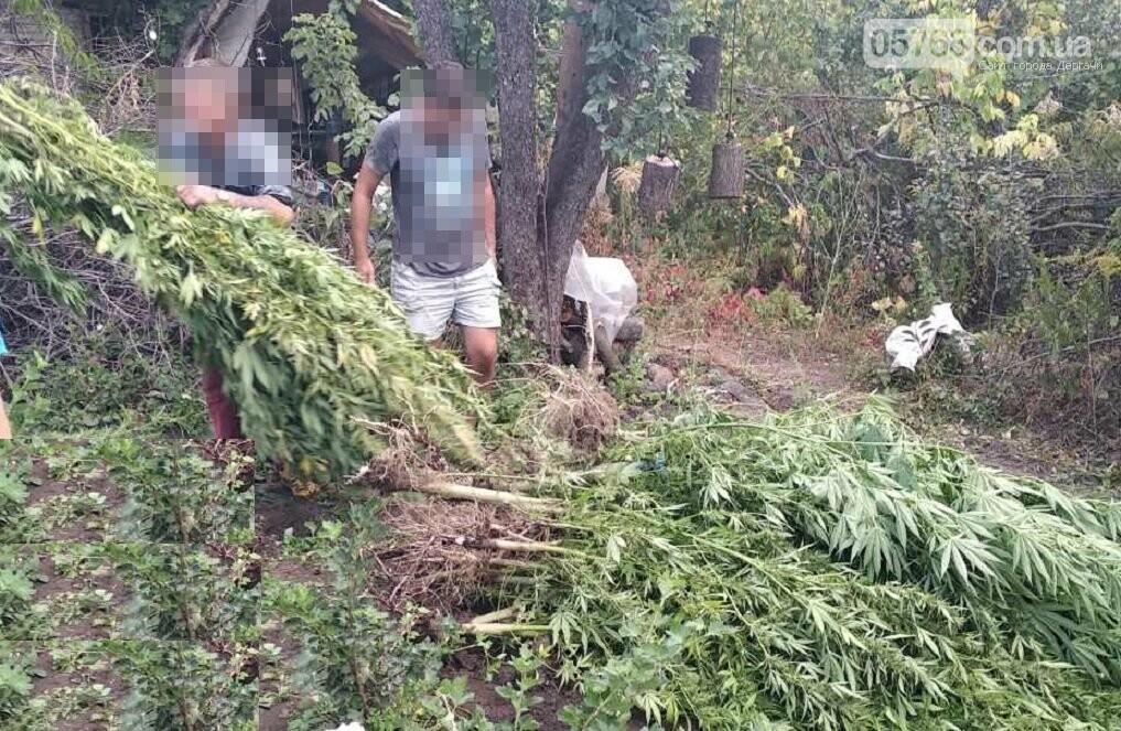 Житель Дергачевского района дома выращивал наркотики, фото-2