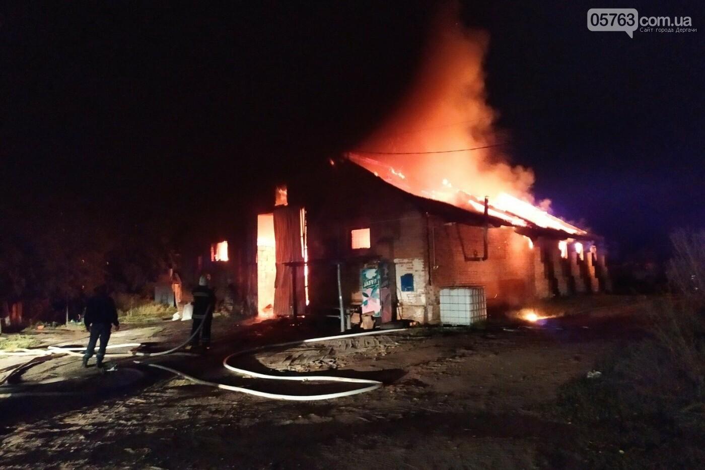 Крупный пожар в Дергачевском районе (ВИДЕО), фото-2