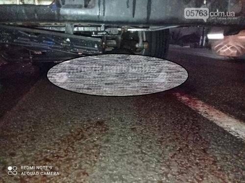 Страшна аварія в Солоницівці: пішоходу не залишили шансів (фото 18+), фото-1