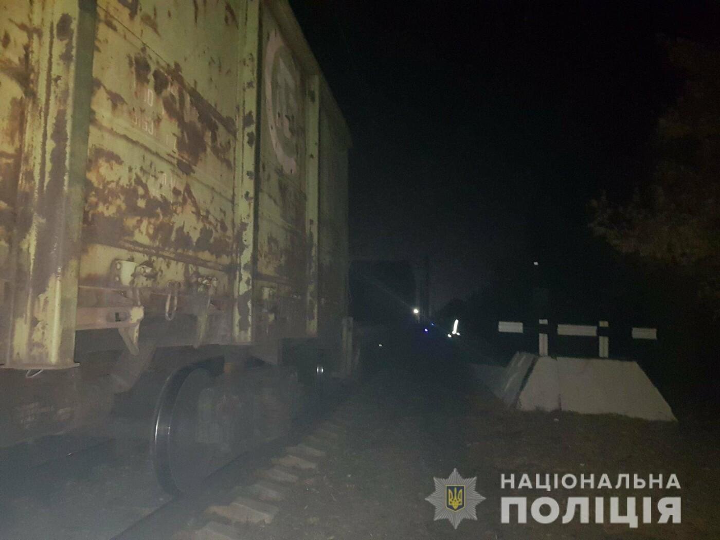 В Дергачах грузовой поезд насмерть сбил мужчину, сидевшего на рельсах, - ФОТО, фото-4